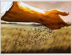 El buen sembrador